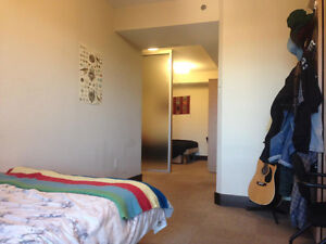 Double Room Lease Takeover - Luxe 2 Kitchener / Waterloo Kitchener Area image 5