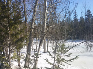 Live by the Lake - 2.4 Acres of Land for Sale by Owner