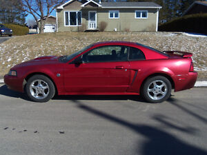MUSTANG 2004 ( 40th anniversaire )