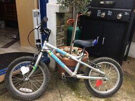 """16"""" Dawes Blowfish Boys Bike"""