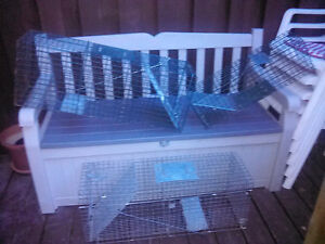 3 live animal traps Cambridge Kitchener Area image 1