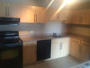 Lakeview Condo for rent Available now