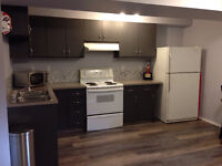 Executive 2 Bedroom + Office Basement in Canmore for rent