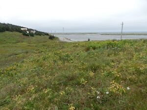 Land For Sale Point Verde Placentia Area St. John's Newfoundland image 7