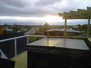 LUXURY FURNISHED 2 BRM PENTHOUSE W/ROOF TOP HOT TUB