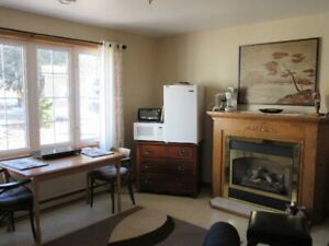 Short Term Rental, Quiet Ideally Located Furnished Flat,