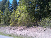Lot 5, Dale Lake Road Quesnel, B.C . V2J-6E9