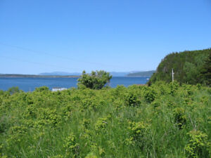 948 South Shore Highway, Frenchman's Cove-NL Island Realty