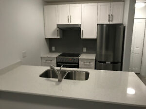 Newly Renovated 1 Bedroom Apartment for RENT in Marpole!