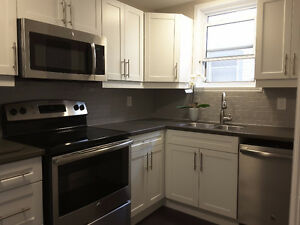 ALL INCLUSIVE, Beautifully Renovated Downtown Apartment