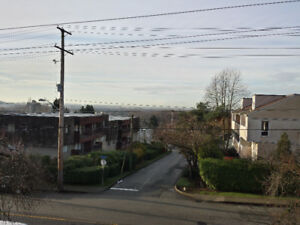 One Bedroom Apartment New Westminster