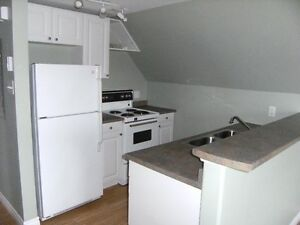 Professional 1 bedroom apartment near downtown new glasgow