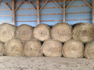 Excellent quality hay, 4'x5' round bales
