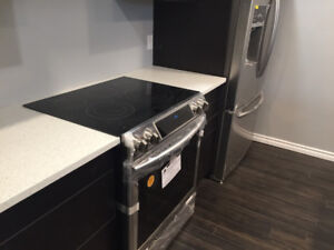Amazing 2 Bedroom Basement Suite - Loaded - Available now