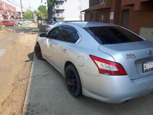 Nissan maxima hundred and forty thousand km