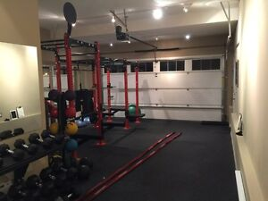 Small Group/Personal Training  Cambridge Kitchener Area image 5