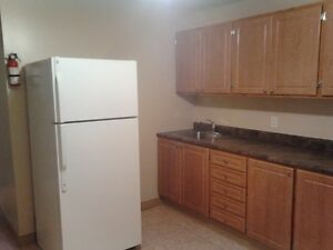 2 bedroom apt in Deer Lake available