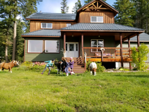 Golden BC Mountain home with 3 income Cabins and huge shop.