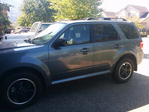 2012 Ford Escape XLT SUV,