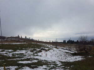 Acres for sale in Naramata
