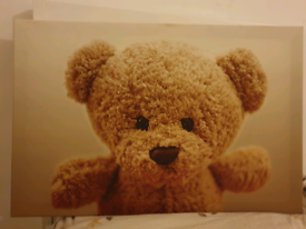 Beautiful bear canvas picture