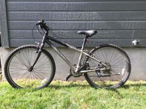 Vélo Gary Fisher 33cm