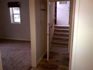 large bright 2 bedroom plus den basement suite.