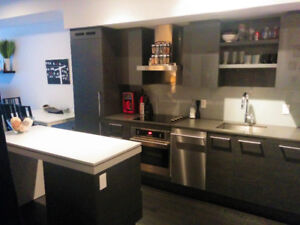 1030 King St. W. #318 -  DNA3 Condos