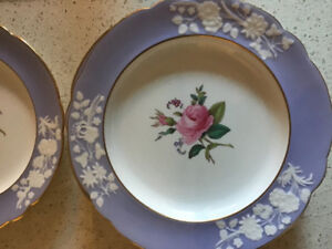 SPODE 'Maritime Rose' Bone China