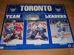 Toronto Maple Leafs Team Leaders 1993, picture board.