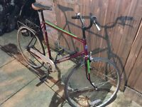 Gents Hybrid/Fixie. Free Lock/Lights/Delivery