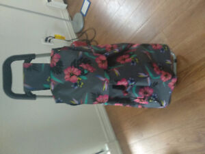 Trolley bag  GUC. Used for 5 months as good as new