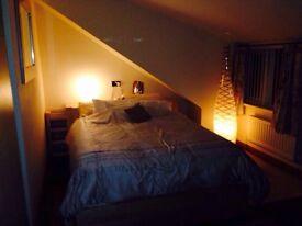 Double room in Luxury gay-friendly house in Fenham