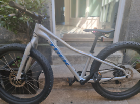 Trek Roscoe (2019) kids mountain bike