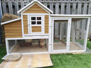 Backyard chicken coop, chickens and accessories