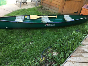 Canoe and motor for sale