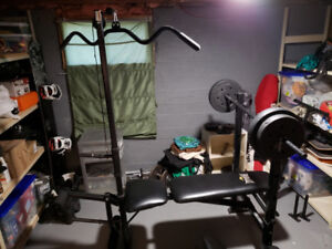 Everlast adjustable bench with weights