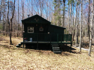 Camp for sale on 36 acres land