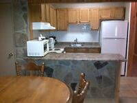 Furnished All Inclusive 2 Bedroom Apartment