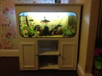 3ft fish tank cabinet