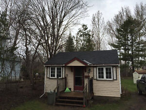 Cute and clean 1 bdrm house on large lot
