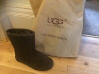 Brown Ugg Boots brand new Size 5