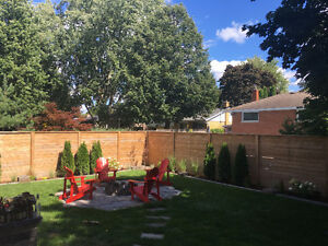 FALL CLEAN UPS AND GARDEN MAINTENANCE Kitchener / Waterloo Kitchener Area image 4