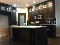Kitchen Cabinets Spray Painting or Color Change