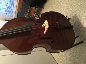 Stentor Student 11 Acoustic Bass Guitar
