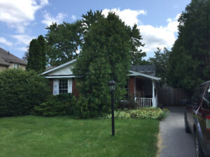 BEAUTIFUL 3 BEDROOM HOUSE IN DUNDAS