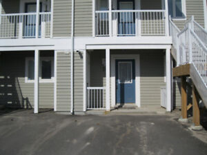 SUMMER RENTAL IN COLLINGWOOD-18 Cranberry Surf (166213)