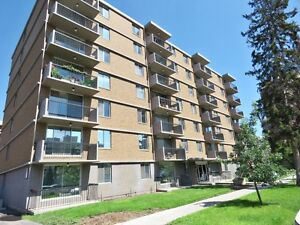 RENOVATED, SPACIOUS INNER CITY 1 BEDROOM UNIT - A MUST SEE!