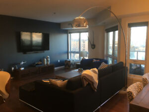 1 bedroom Condo, fully furnished - Riverfront Building