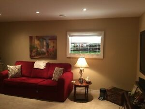 "Fabulous ""window for basement"" a basement reno with no windows!!"